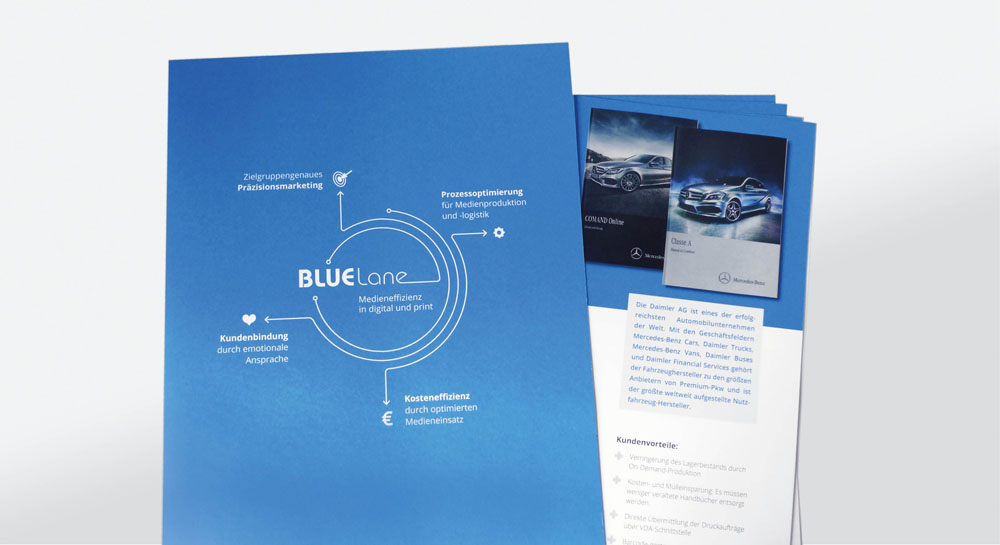 bluelane10